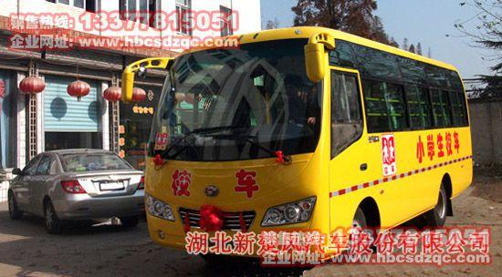 楚风牌小学生校车(33)图片