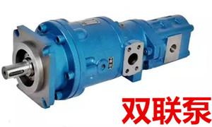 双联泵、减速机总承吊机配件图片